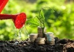 47356664 - money growth concept plant growing out of coins
