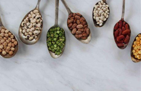 האם עיבוד המזון עשוי לשפר את העיכוליות של חלבון צמחי?