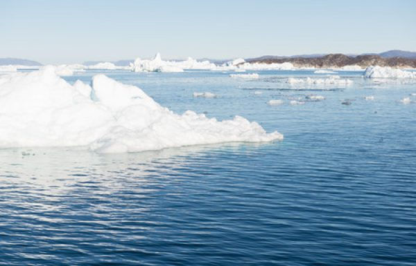 יוניליוור שוב מובילה במאבק בשינוי האקלים