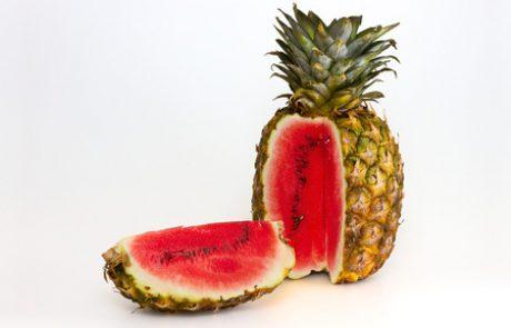 הצד הטוב של הנדסה גנטית במזון