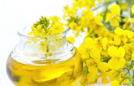 עדכונים בשומן טראנס: מה אומר ה-FDA? ומי עדיפה? מרגרינה או חמאה